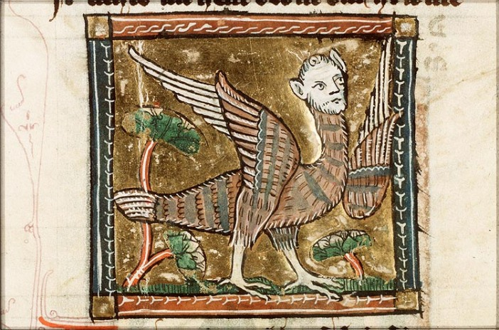 A medieval depiction of a harpy as a bird-woman