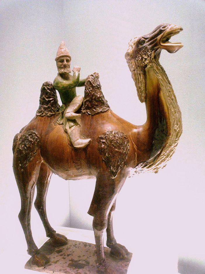 Westerner_on_a_camel